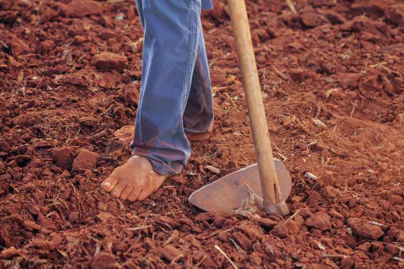 person plowing soil