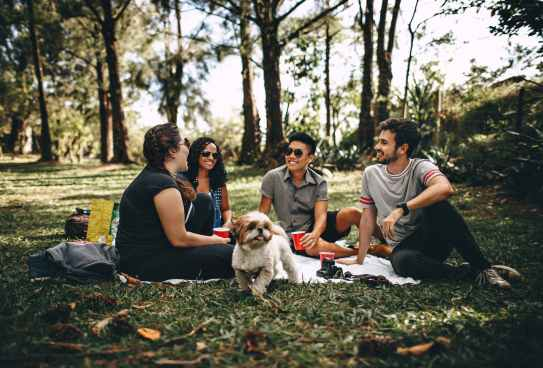 Photo by Helena Lopes on Pexels.com
