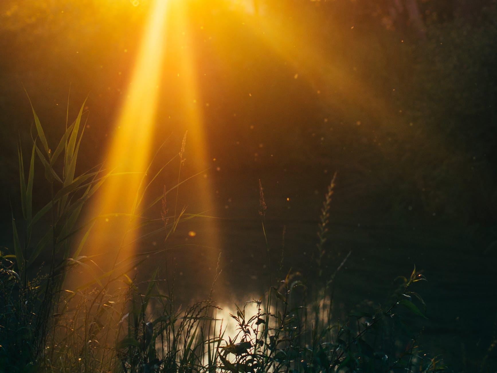 nature sunset sun dust