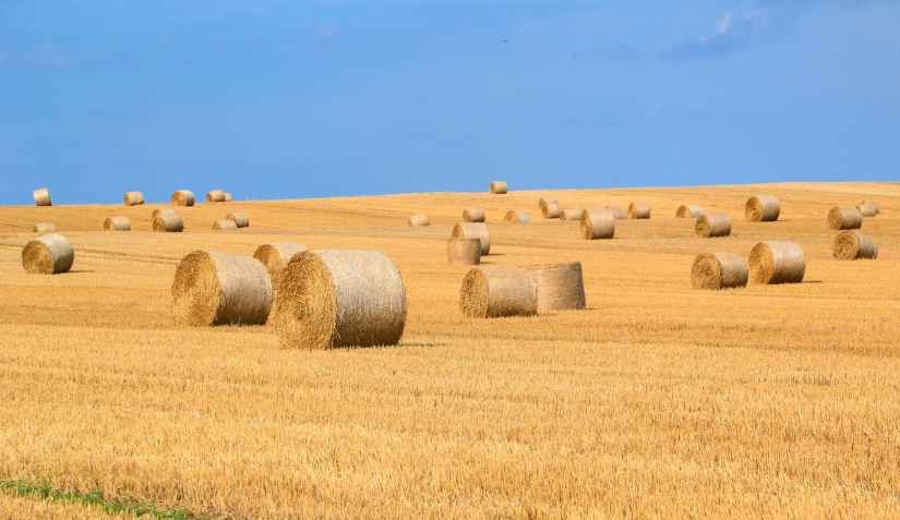 agriculture arable bale countryside