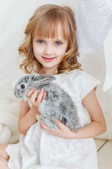 Photo by Anastasiya Gepp on Pexels.com